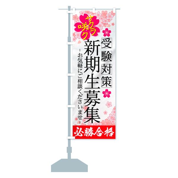 のぼり 新規生募集 のぼり旗のデザインAの設置イメージ