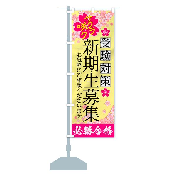 のぼり 新規生募集 のぼり旗のデザインBの設置イメージ