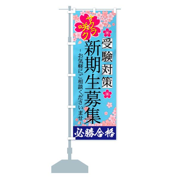 のぼり 新規生募集 のぼり旗のデザインCの設置イメージ